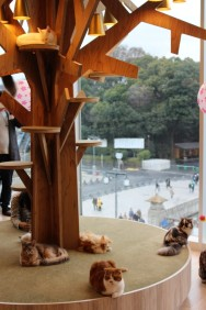 Tokyo Travel Blog (91)