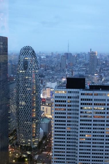 Tokyo Travel Blog (98)