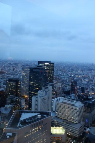 Tokyo Travel Blog (99)